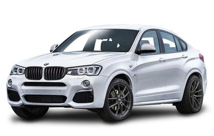 BMW Nieren